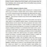 Bakalárska práca - Konflikt 3