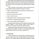 Bakalárska práca - Podnikový manažment 2