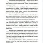 Bakalárska práca - Podnikový manažment 3