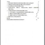 bakalarska-praca-poruchy-spravania2
