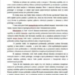 Vzor bakalárskej práce – Politický systém