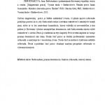 Diplomová práca - Abstrakt