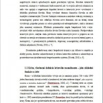 Diplomová práca - Manažment 2