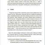 Diplomová práca - Voľby 2