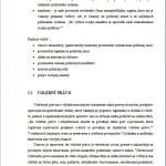 Diplomová práca - Voľby 3