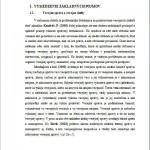 Rigorózna práca - Verejná správa 3