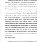 Seminárna práca - Fiškálna politika 2