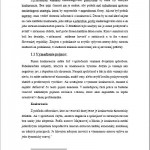 Seminárna práca - Konkurencia