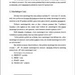 Seminárna práca - Marketing 3
