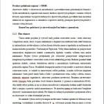 Seminárna práca - Podnikateľský plán 2