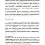 Seminárna práca - Politický sýstem