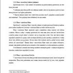 Seminárna práca - Postavenie žien 3