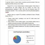 Seminárna práca - Rozpočet 2
