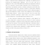 Bakalárska práca – Teória literatúry