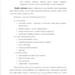 bakalarska-praca-vzor-teoria-literatury3